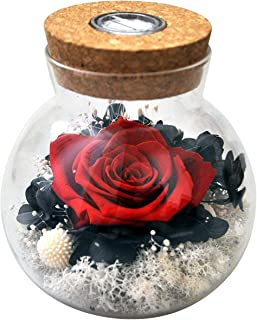 Handmade Preserved Real Rose Present Gorgeous Led Mood Light, Upscale Gift Exquisite Eternal Flower Birthday, Anniversary, Valentine's Day, Christmas, Thanksgiving Day- (Skyfire)