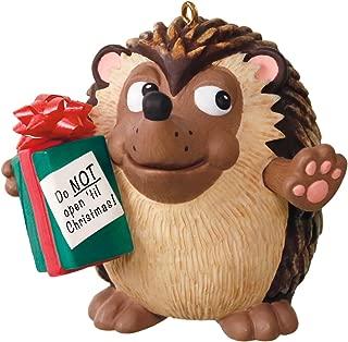 Hallmark Keepsake Ornament U Can't Touch This Hedgehog Musical
