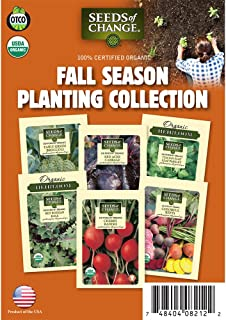 Seeds of Change 60-08212 Certified Organic Fall Season Planting Collection Garden Seeds