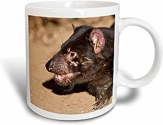 3dRose mug_76155_2