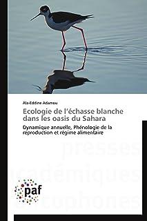 Ecologie de l'échasse blanche dans les oasis du Sahara: Dynamique annuelle Phénologie de la reproduction et régime alimen...