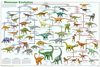 Laminated Dinosaur Evolution Educational Science Chart Poster 36 x 24in