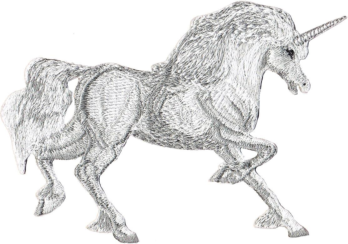 Application Unicorn Running Patch