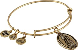 Alex and Ani - Pineapple II Bracelet