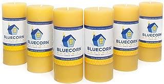 Bluecorn Beeswax 100% Pure Raw Beeswax Pillars: Case (6) 2