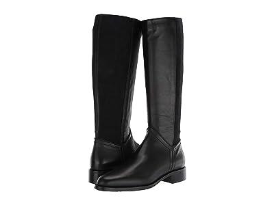 Aquatalia Nia (Black Calf/Cashmere Elastic) Women