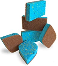 Pura Naturals Ever-Fresh Cleaning Sponges Inhibit Bacteria. Stay Fresh mildew-free Scent! Eco Kitchen/Household/Dish Sponges w/Walnut Scrubbers. 40x more durable. (6-pack | 48 Hour Infused Soap Blast)