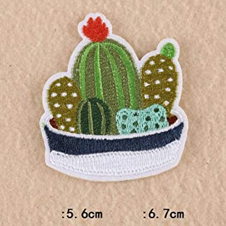 1 PCS Cactus Plants Patches for Clothing Embroidered Appliques Iron on Badges Succulents Stripes Stickers on Clothes (9)