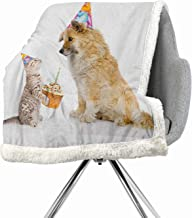 Khakihome Kids Birthday Blanket Small Quilt 60 by 47 Inch Bed Cover MulticolorCat and Dog Domestic Animals Human Best Friend Party with Cupcake and Candle