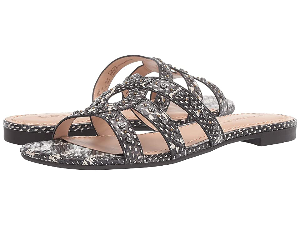 COACH Kennedy Flat Slide with Tea Rose Studs (Natural Reptile) Women