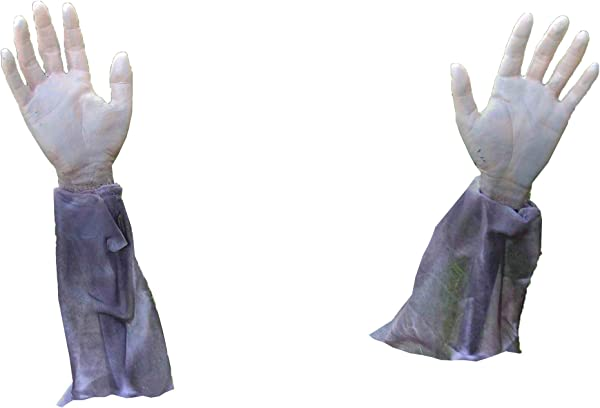 Forum Novelties Zombie Hands Arms 2 Zombie Lawn Stakes