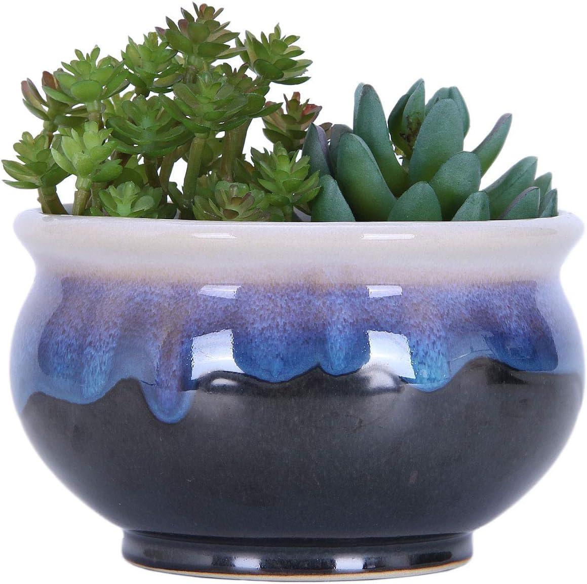 VanEnjoy Large Ceramic Succulent Ranking TOP11 Flowin Sales for sale Pot Multicolor Colorful