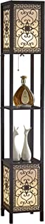 Artiva USA A808102DEX Infinity Heart Shelf Floor Lamp, 64