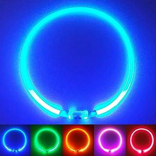 PetSol Collar de Seguridad LED Recargable Ultra Brillante para su Mascota (batería de Litio Recargable) Mayor Visibilidad y Seguridad Azul