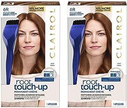 Best ion rose hair color permanent Reviews