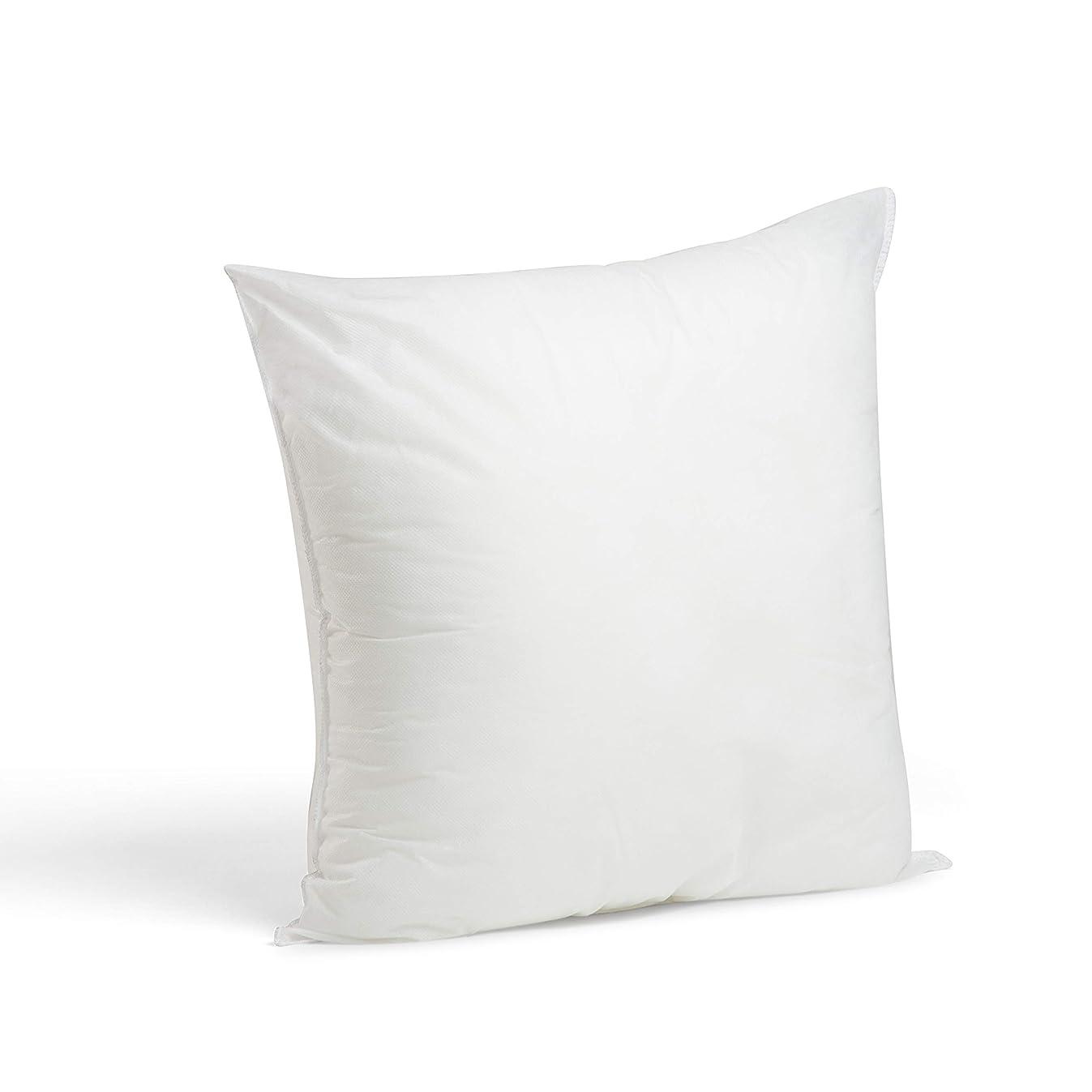 Foamily Premium Hypoallergenic Stuffer Pillow Insert Sham Square Form Polyester, 18