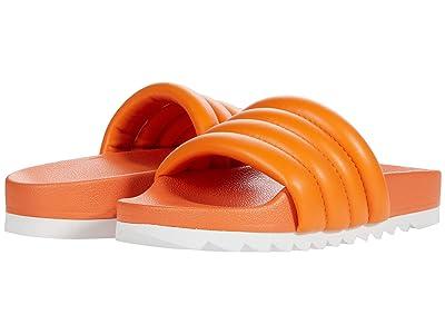Steve Madden Canny Sandal