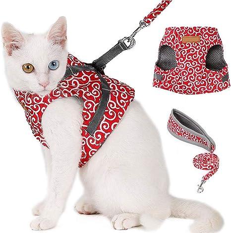 harnais de gilet de chien respirant harnais de sangle de poitrine pour harnais de gilet pour animaux de compagnie avec corde de traction pour animaux de compagnie Sangle de poitrine de chien de chat