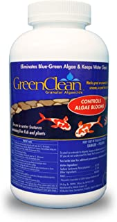 GreenClean Granular Algaecide - 2.5 lbs - String Algae Control for Koi Pond, Fountain, Waterfall, Water Features on Contact