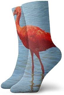 BEDKKJY, Calcetines Deportivos Scarlet Tobago National Bird Gran Vestido para Mujer Stocking Holiday Calcetín Liquidación para niños