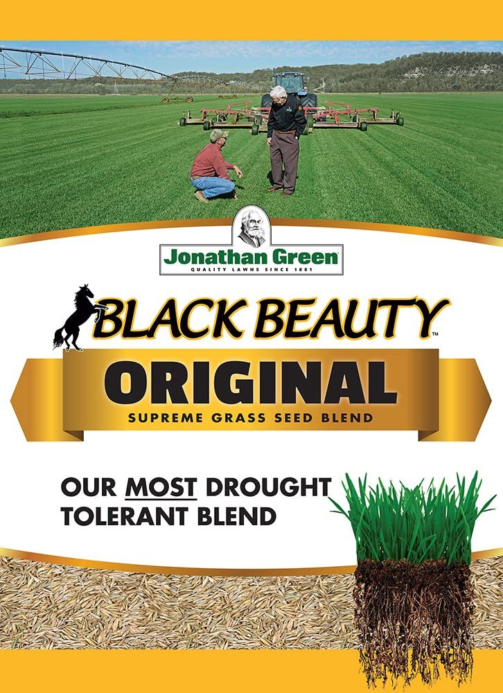 Jonathan Green 2021new shipping free shipping 10318 Black Beauty 5 Pounds Max 72% OFF Grass Seed Mix