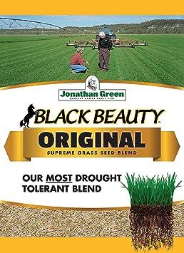 Jonathan Green 10315 Black Beauty Grass Seed Mix