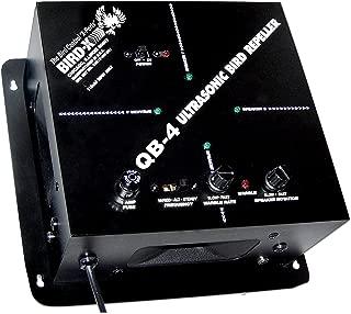 ultrasonic blaster