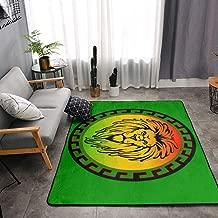 NiYoung Bedroom Living Room Kitchen Queen Size Kitchen Rugs Home Decor - Rasta Lion Jamaican Reggae Flag Green Floor Mat Doormats Quick Dry Throw Bath Rugs Exercise Mat Throw Rugs Runner