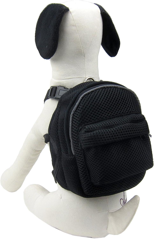 Alfie Pet  Gene Backpack Harness with Leash Set  color  Black, Size  Large