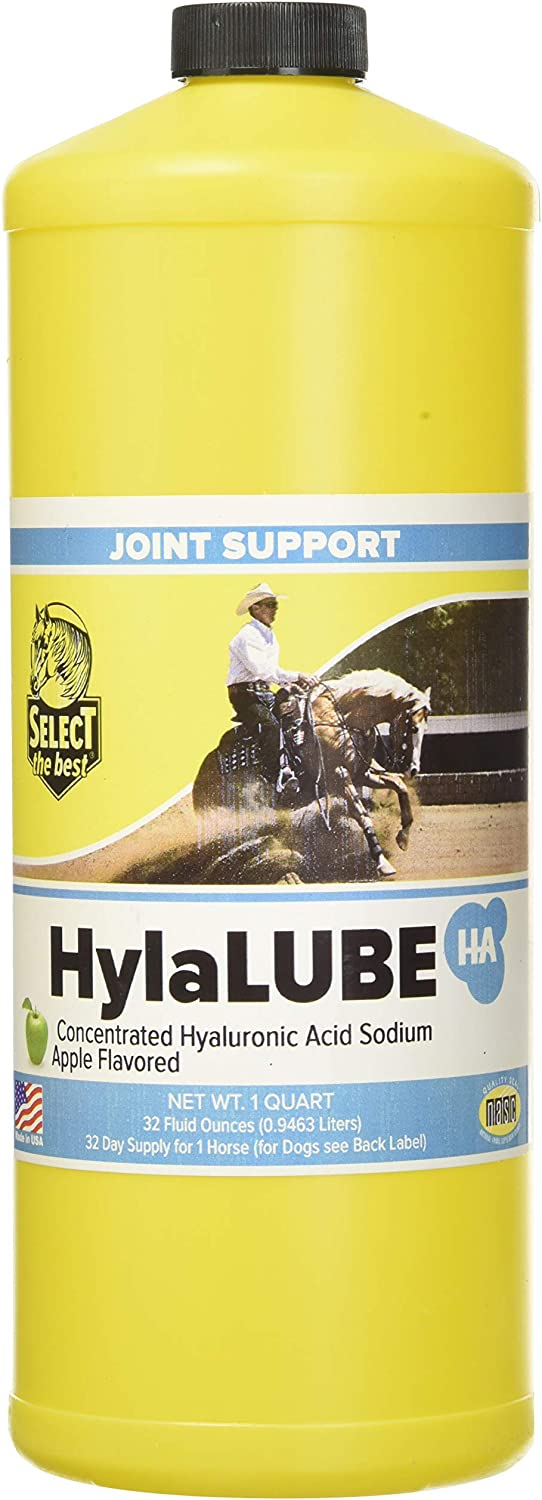 RICHDEL 81321 Hylalube Concentrate Apple Pet Hip and Joint Care