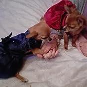 con fiocco e tut/ù Sukisuki Vestitino da principessa per cagnoline