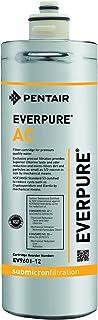 Everpure EV960112Cartouche de filtre à eau à charbons actifs