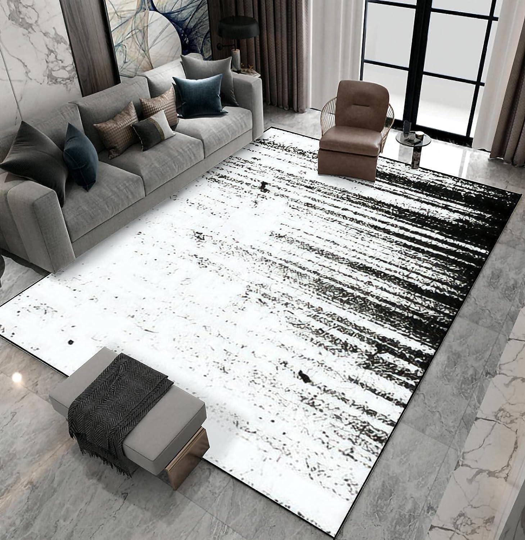 Area Rug Austin Mall Non-Slip sold out Floor Mat O Texture Grunge Illustration Indoor