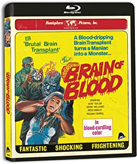 Best brain of blood Reviews