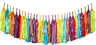 Blulu 30 Pieces Tassels Fiesta Tassel Banner Colorful Tassel Garland Tissue Paper and Metallic Foil Tassel Garland Banner for Birthday Wedding Party Favours Party Decorations, 6 Colors