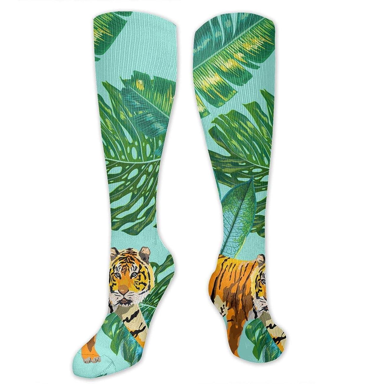 朝食を食べる辞任アスペクト靴下,ストッキング,野生のジョーカー,実際,秋の本質,冬必須,サマーウェア&RBXAA Women's Winter Cotton Long Tube Socks Knee High Graduated Compression Socks Tigers in Palm Leaves Socks