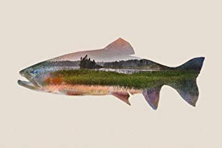 Trout - Double Exposure (12x18 Art Print, Wall Decor Travel Poster)