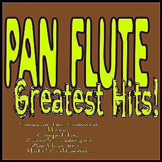 careless whisper flute music