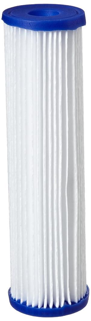 Pentek R30 Pleated Polyester Filter Cartridge, 9-3/4