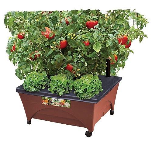 Grow Boxes Amazon Com
