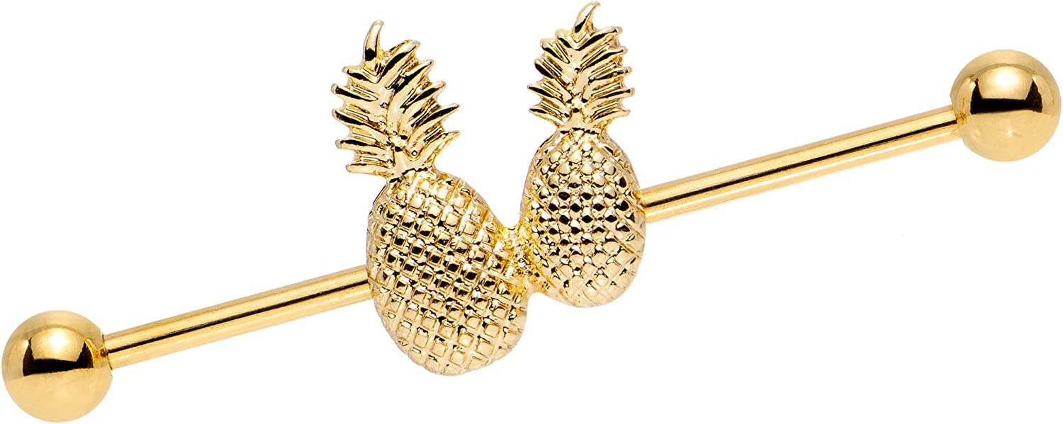 Body Candy Anodized Steel Pair of Pretty Pineapples Helix Earring Industrial Barbell Piercing 14 Gauge 38mm