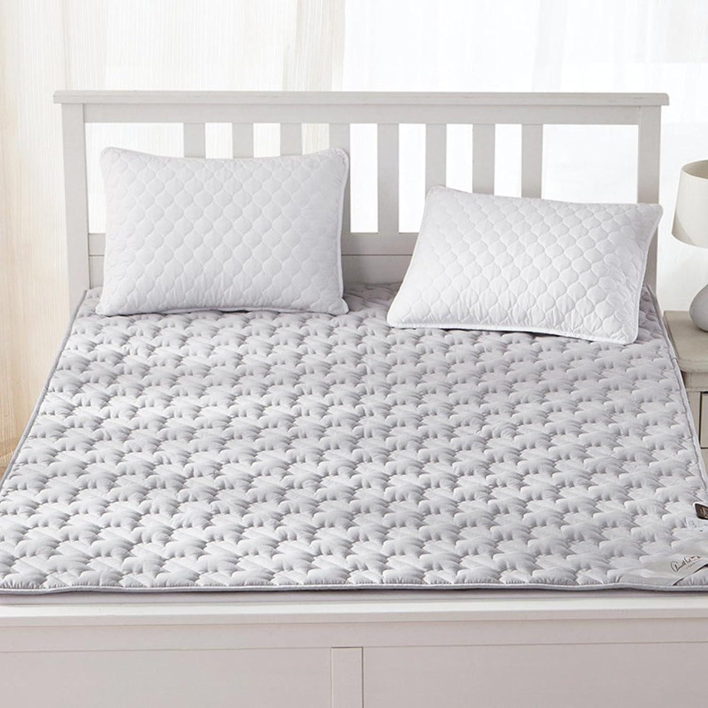 Folding Floor Mats Twin Pads Student,Dorm Room,Tatami Mattress Mattress Mattress-B 180x200cm(71x79inch)