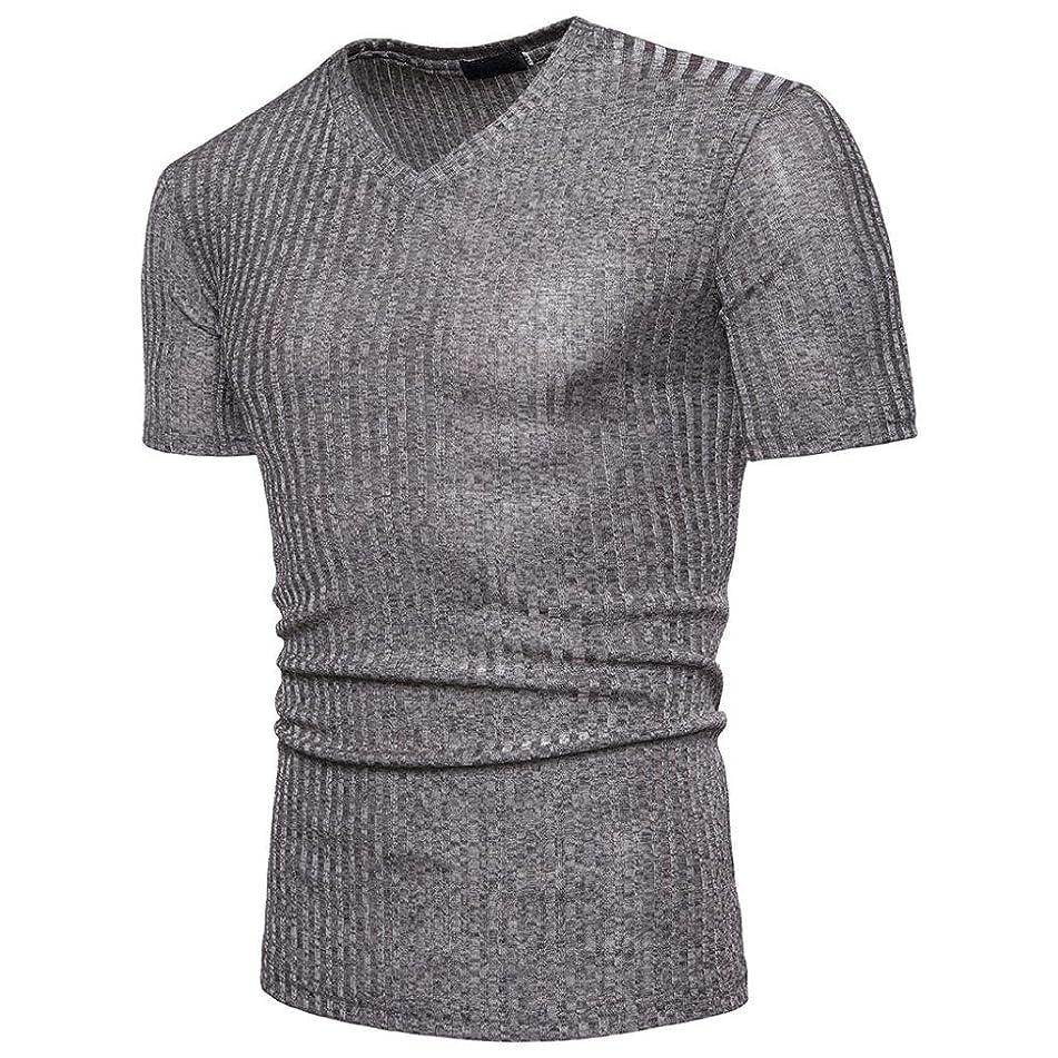 GREFER Men Blouse Short Sleeve Fit Pollover Shirt V Neck Causal Top T-Shirt