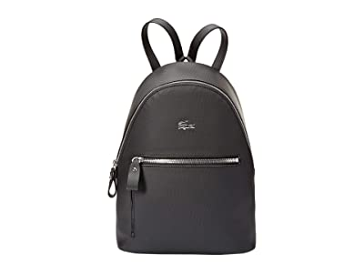 Lacoste Daily Classic Backpack (Black) Backpack Bags