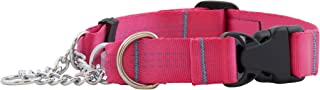 Canine Equipment Technika 3/4-Inch Quick Release Martingale Dog Collar, Small, Raspberry