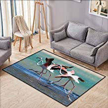 Classroom Rug,Flamingo Decor Collection,Flock of Flamingos Taking Off from The Lagoon to Fly Away Water Natural Picture,Super Absorbs Mud,3'3