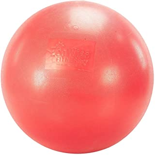 Fitness Ball in Cherry
