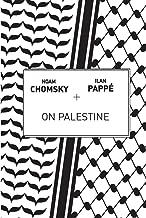 noam chomsky palestine