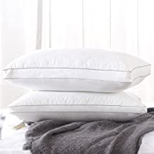 Fancy Collection 2 Pc Queen Size Soft Bed Pillows for Sleeping, Hypoallergenic Bedding Pillow, Anti-Mite Silk Cotton and Feather Velvet for Breathable and Softer Sleeping New