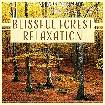 Blissful Forest Relaxation: Woodland Ambient, Soothing Music, Call of Nature, Sounds for Home Meditation, Better Sleep & Spa Massage